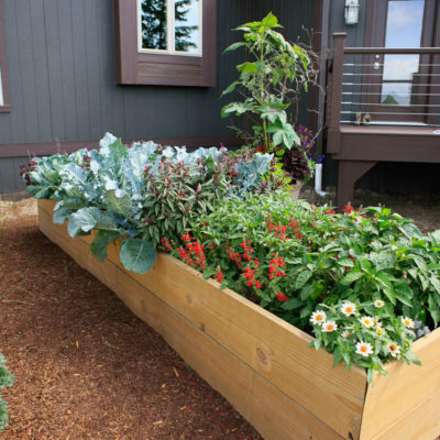 Raised Bed Gardening, 'The Soil'