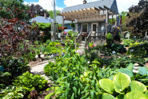 The At Home Gardener, featuring Ed & Dave Janowski, 'The Hostaholics'