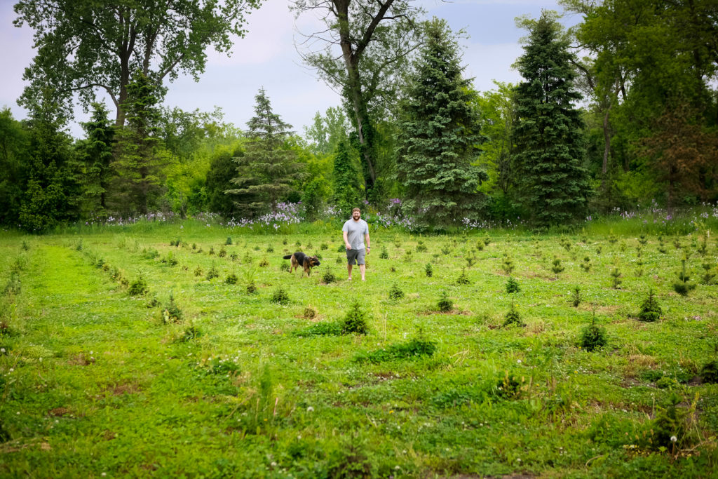 Jeremy, walking the field of baby trees, with pal, Luka.